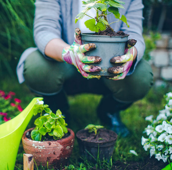 Gardening and Landscaping Services Near Birmingham